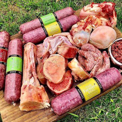 Raw Dog Food Taster Pack UK Delivery